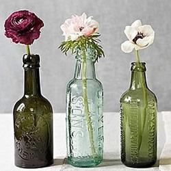 小口空玻璃瓶废物利用图片 环保从我们做起