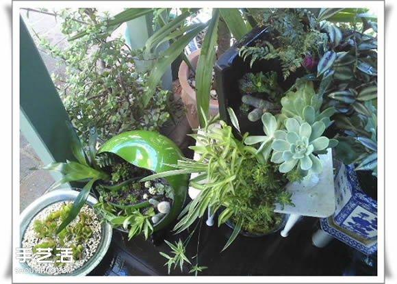 廢品利用手工製作盆景 塑料廢棄物DIY盆景教程