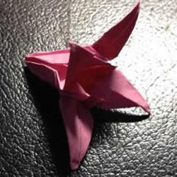 百合花怎么折图解教程 折百合花的过程实拍