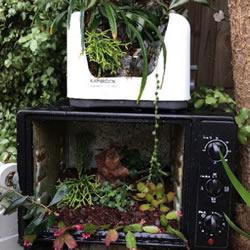 旧烤箱废物利用 改造成园艺盆景的小制作方法