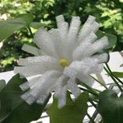 泡沫纸手工制作菊花 简单泡沫纸菊花的做法