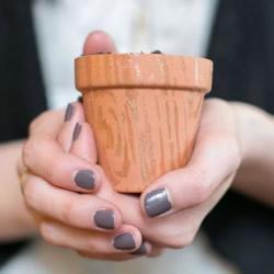 指甲油改造小陶盆图解 多肉花盆的改造方法