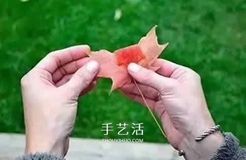 落叶制作玫瑰花图解 枫叶玫瑰花的做法步骤 -  www.shouyihuo.com