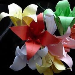 手工折叠百合花图解 简单纸百合的折法步骤