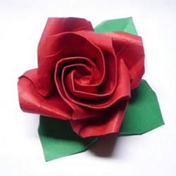 玫瑰花的详细折纸步骤 折纸玫瑰的过程图