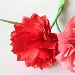 母亲节康乃馨花的做法 彩纸康乃馨手工制作