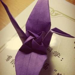 玫瑰千纸鹤的折法图解 手工折纸玫瑰千纸鹤
