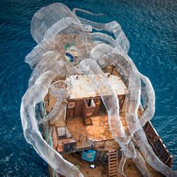 巨大章鱼为伍 二战战舰成为艺术感的人工岛礁