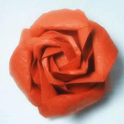 详细欧美玫瑰的折法图解 PT玫瑰怎么折步