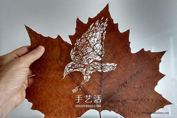 想尝试换行业么?38岁拳击冠军的叶子雕刻 -  www.shouyihuo.com