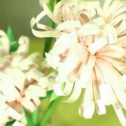 重阳节手工制作 彩纸做立体菊花的方法图解
