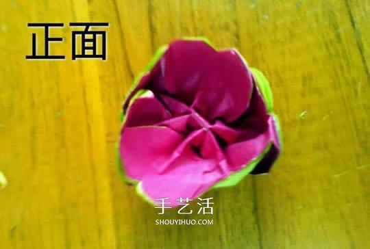 月季花的折法简单易学 情人节月季花手工制作 -  www.shouyihuo.com