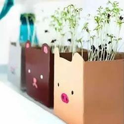 牛奶盒废物利用 手工制作简易花盆的方法图解