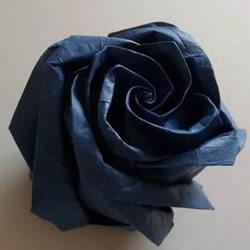 折纸玫瑰花教程 漂亮贝利尔玫瑰的折法步