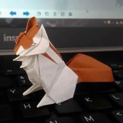 复杂小动物折纸 立体松鼠的折纸方法带CP图