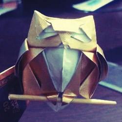 烟盒纸废物利用 手工折纸立体猫头鹰图解步骤