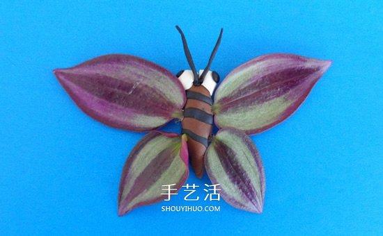用樹葉做翅膀 簡單省力的粘土蝴蝶手工製作