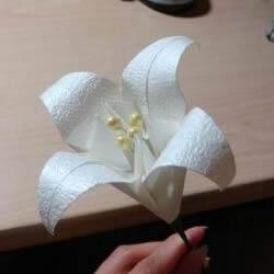 寓意百年好合! 美丽纸百合花的折叠方法图解