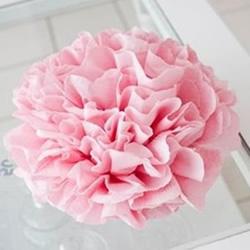母亲节送花手工制作 皱纹纸做康乃馨花图解