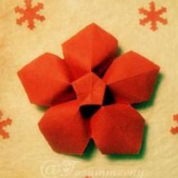 手工五星花的折法图解 还可以做成花型收纳盒