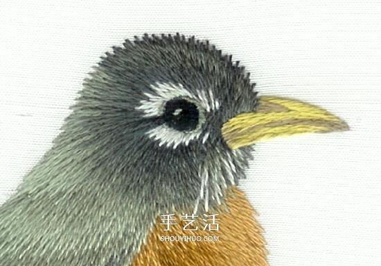 傳統花鳥刺繡的綉法圖解 漂亮小鳥綉法步驟圖