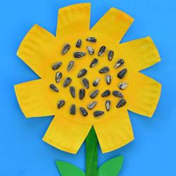 幼儿手工做向日葵的方法 纸盘向日葵制作图片