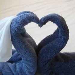 毛巾天鹅的折法图解 客房浴巾毛巾折天鹅