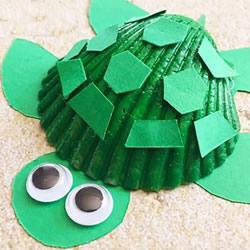 用贝壳做小乌龟的方法 幼儿手工制作小乌龟
