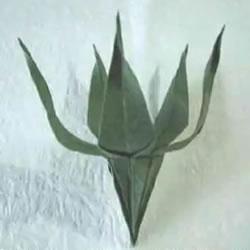 折纸花朵不可少!简单花萼的折纸方法图