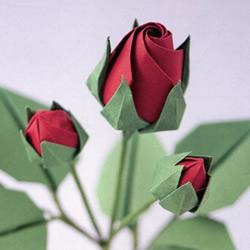 玫瑰花苞的简单折纸教程 花萼的折法也送上!