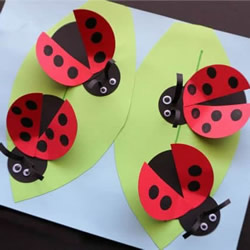 幼儿园卡纸手工制作七星瓢虫的方法图解