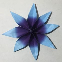 用两张纸折立体八瓣花的手工折纸方法图解