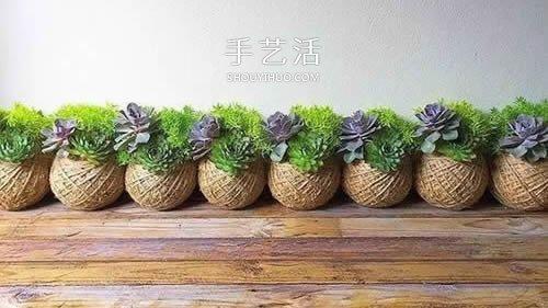 别浪费钱买花盆!用绳子就可以种出美丽多肉 -  www.shouyihuo.com