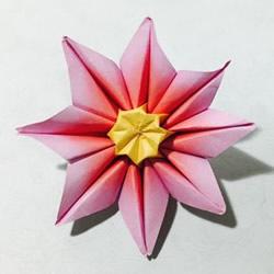 怎么手工折纸太阳花的详细步骤 简单容易学!
