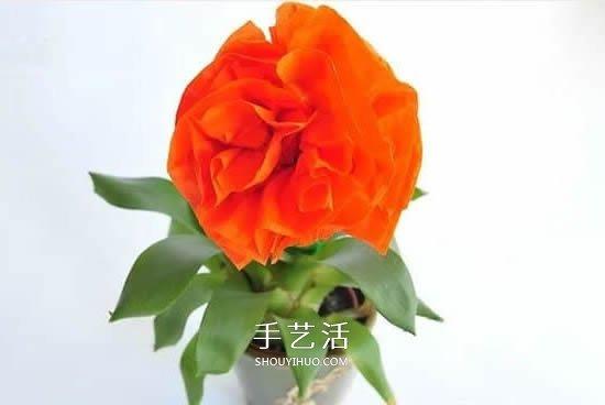 几张餐巾纸 做一朵立体纸花作为父亲节礼物 -  www.shouyihuo.com