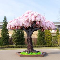 一年四季都绽放 世界上最大乐高樱花树图片