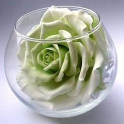 海绵纸手工制作玫瑰花的方法 逼真到难分真假!
