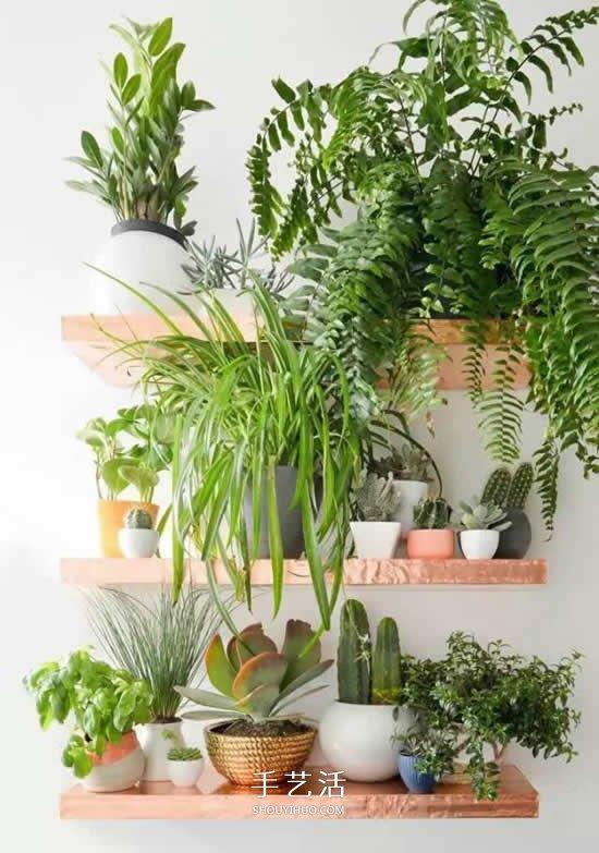 省地又好看的种花方式 原来花盆还能这么放 -  www.shouyihuo.com