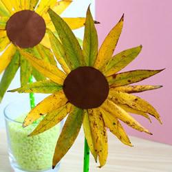 用叶子制作向日葵方法 自制树叶太阳花图解