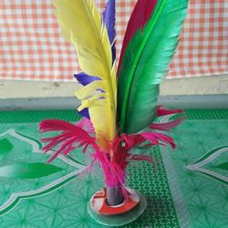 自制羽毛毽子的做法步骤图解教程