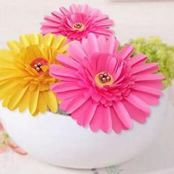 彩纸手工制作美丽的立体雏菊图解