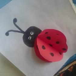 幼儿园手工制作立体瓢虫的做法