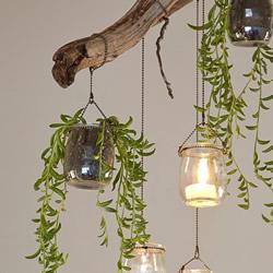 迷人的吊灯装饰!枯枝和玻璃罐的再利用DIY