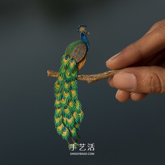 365天的坚持!剪纸出微型相思鸟、黄鹂…… -  www.shouyihuo.com