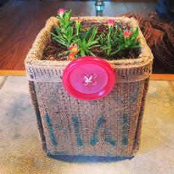 牛奶盒废物利用 用麻布改造成多肉植物花盆