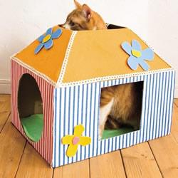 纸板箱废物利用 简单制作成猫咪的温馨小屋!
