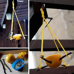 自制柚子皮小鸟喂食器的方法图解教程