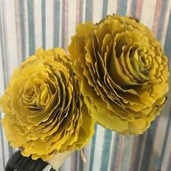 自制银杏叶玫瑰花的方法图解教程