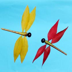 巧用树叶、桂圆核做创意蜻蜓