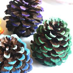 秋天彩绘松果装饰的制作方法图解教程